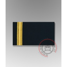 Degrees for Second Pilot