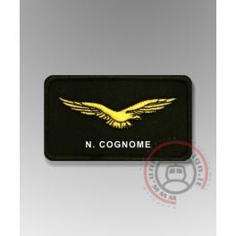 Civil Air Pilot Gold